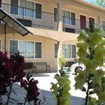 E. C. Yosemite Motel