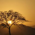 tramonto in safari