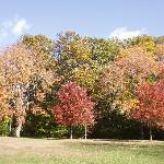 Slater park in the fall