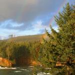 Double rainbow in adjacent pines.