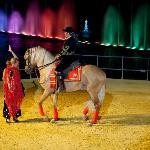 El Arte de Andalucía a Caballo