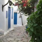 Basil scented laneways - Basilikos