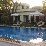 Pool Side Garden