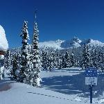 Bluebird Day on Whistler Mountain