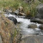 Bajando al arroyo