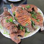 Karimeen (pearl spot) fish fry