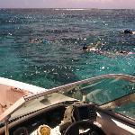 Snorkeling Cades Reef
