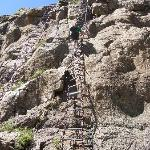 The chain ladder!