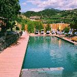 prachtig natuur zwembad