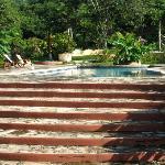 The pool area at Mango Rosa