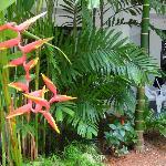 jardin de l'hotel