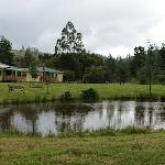 The Ponds and Cabins