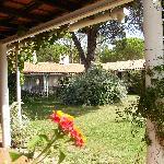 Moinho Velho's garden