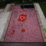 Birthday surprise - petals in the pool