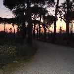 tramonto parco