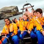 Seabird Seafari Boat trip around the famou Bass Rock