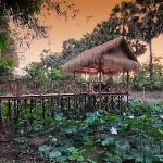 Dining over your own lotus pond