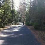 Gold Country Campground