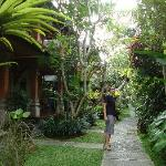 The Garden and pathway to rooms
