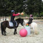 Pony games and pony trail riding for children