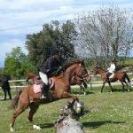 Intensive horse riding courses for teens