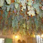 Grapes for the Vinsanto