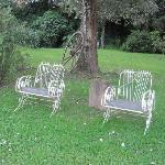 tranquil lawn chairs