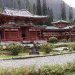 The Buddhist Temple