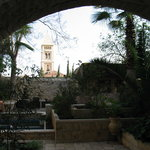 One view of the garden