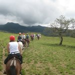 Horseback ride to the Waterfall and Hot springs