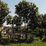 Exterior jardin