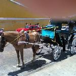 una pintorezca carroza