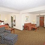 King Suite offers a microwave, refrigerator, & flat screen TV.