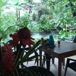 Der Garten-Pavillon am Teich im Dschungelgarten