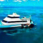 Reef Experience the Great Barrier Reef
