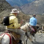 Jomsom Horse Riding