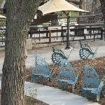 Cute butterfly benches