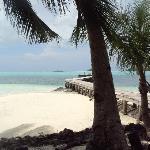 Carp Island Resort Foto