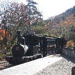 蒸気機関車(乗れます☆)