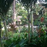 gardens all around