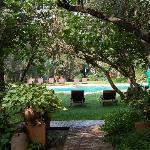la piscine vue de la suite romane