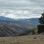 nearby scenery