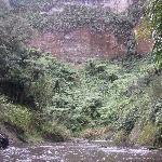 Majestic Mangaio Gorge