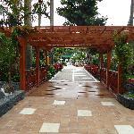 Walkway to pool area/gardens