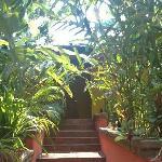 cuenta con bellos y muy cuidados jardines