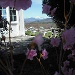Spring View from the front corner of the 1785 Inn