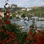 Marina and hillside from the patio