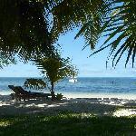 Jardin et plage