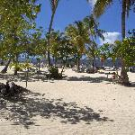 beautiful beach on bacardi island