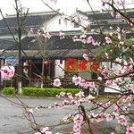 Wonderful House (in chinese name:Wang Fu Lou)